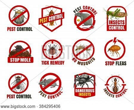 Pest Control Isolated Vector Icons. Colorado Beetle, Cockroach And Rat With Locust, Mole, Tick And M