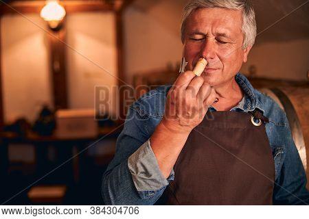 Handsome Winemaker Enjoying The Scent Of Wine Cork