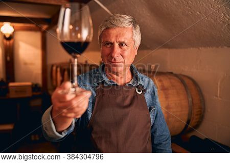Good-looking Winemaker Holding Glass Of Red Wine