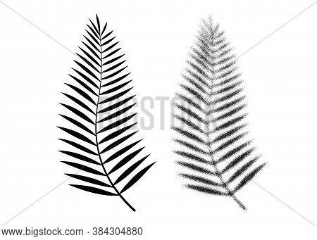 Palm Leaf Vector Icon. Tropical Dotwork Leaf. Beach Palm Tree Graphic Symbol. Summer Plant Icon. Coc