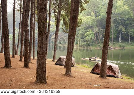 View Landscape Of Pang Ung Pine Forest And Tent Camping While Bamboo Rafts Moving In Pang Oung Lake