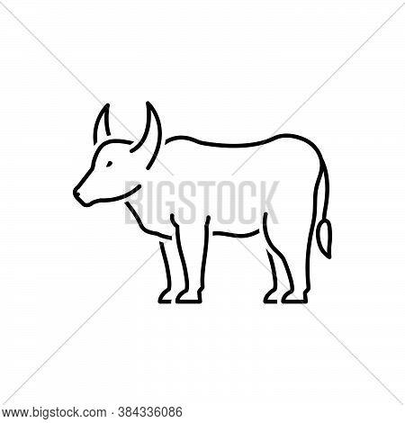 Black Line Icon For Ox Bull Cattle Agriculture Farming Aggressive Oxen Horn Useful Livestock Domesti