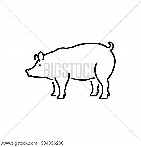 Black Line Icon For Pig Boar Pork Piglet Farm Hog Scrofa Grunter Squealer Swine Hoofed Livestock Dom