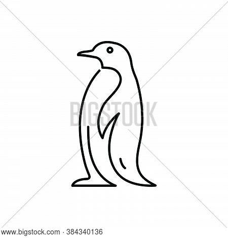Black Line Icon For Penguin Adelie Spheniscidae Animal Antarctic Black-and-white Doodle Iceberg Bird