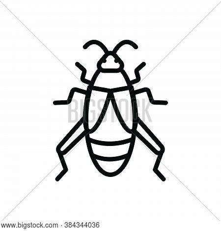 Black Line Icon For Cricket Bug Creepy Disease Croton-bug Dirty Grasshopper Critter Prejudicial Inse