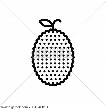 Black Line Icon For Jackfruit Jack-tree Mulberry Vegetable Agriculture Cultivation Plant Farming