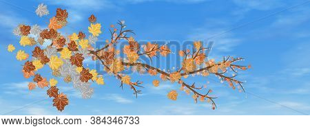 Autumn Tree Branch In The Sky Background By Day - 3d Render