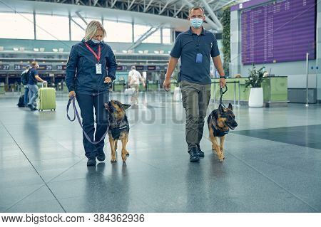 Security Workers With Detection Dogs Walking In Airport Terminal