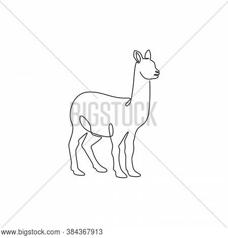 One Continuous Line Drawing Of Funny Alpaca For Farm Logo Identity. Domesticated Mammal Animal Masco