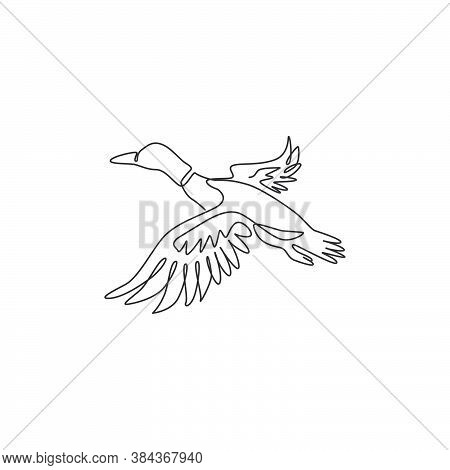 Single One Line Drawing Of Adorable Flying Mallard Duck For Company Logo Identity. Beauty Duck Masco