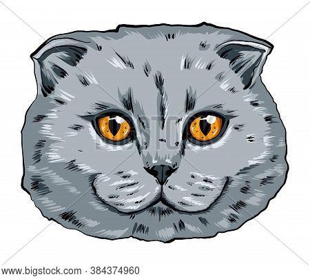 Colorful Portrait Of A Cat Muzzle. Cat Portrait Beautiful Eyes Minimalistic Graphic Illustration. Ha