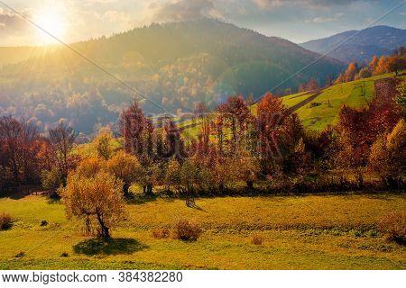 Countryside Autumn Scene In Mountains At Sunset. Trees In Fall Foliage. Beautiful Sunny Weather With