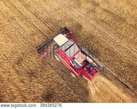 Aerial View On The Combine Working On The Large Wheat Field. Haymaking And Harvesting In Early Autum