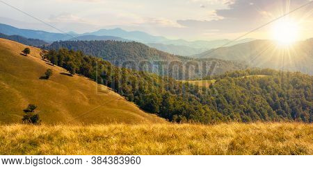 Composite Mountain Landscape At Sunset. Grassy Meadow On The Hillside. Beech Forest On The Distant R
