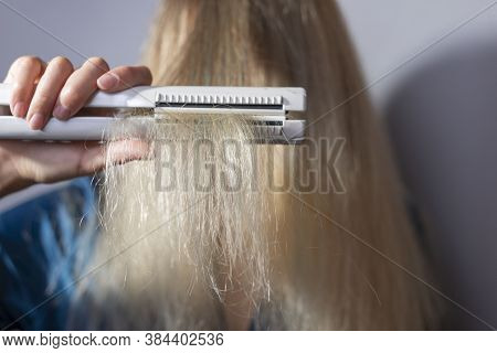 Dry Ends Of Hair Held In Hand By A Blonde With A Curling Iron. Hair Health, Dry Hair Damaged By Over