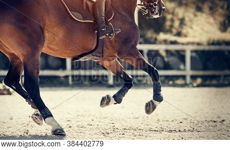 Equestrian Sport. Galloping Horse. Legs Of A Galloping Horse Close-up. Dressage Of Horses In The Are