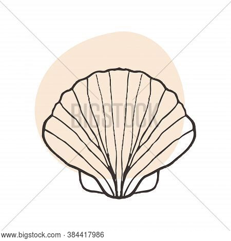 Scallop Shell From The Seabed. Sketch Drawing In Tattoo Style, Black And White Illustration Of A Sca