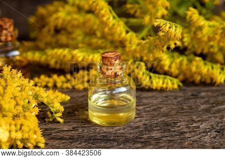 A Bottle Of Essential Oil With Blooming Canadian Goldenrod , Or Solidago Canadensis Plant