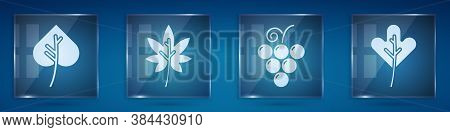 Set Leaf Or Leaves, Leaf Or Leaves, Grape Fruit And Leaf Or Leaves. Square Glass Panels. Vector