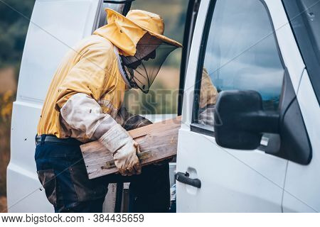 Portrait Of A Beekeeper In Protective Wear Carrying Hive Frame To The Car. Beekeeping Concept