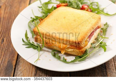 croque-monsieur- grilled toast with ham and cheese