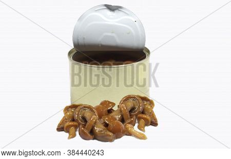 Trifuled Flavored Canned Honey Mushrooms Trifuled Flavored Canned Honey Mushrooms
