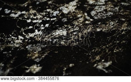 image Macro,Black spots of toxic mold and fungus bacteria on a black wall. Concept of condensation,