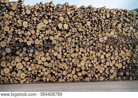 High Logs Ridge In Port Waiting To Be Shipped