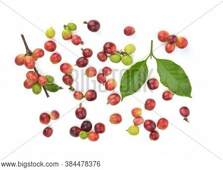 Top View Of Coffee Beans And Coffee Leves Isolated On White Background