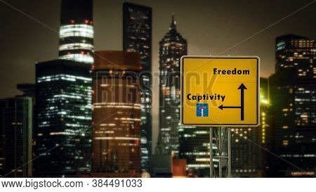 Street Sign The Direction Way To Freedom Versus Captivity