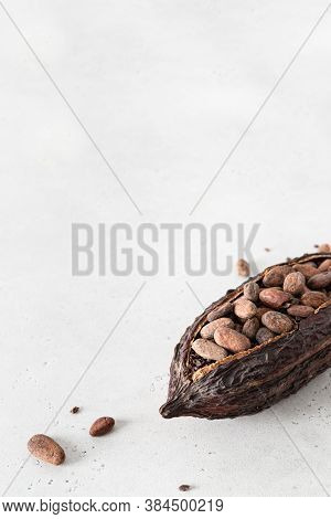 Cocoa Pod With Cocoa Beans On A White Concrete Background. Organic Food. Natural Chocolate. Side Vie