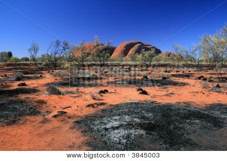 Olgas Desert Rocks
