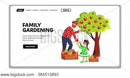 Family Gardening And Harvesting In Orchard Vector