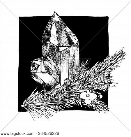 Hand-drawn Graphic Black And White Crystal With Fir Tree Branch And Flower. Semiprecious Gem Stone W