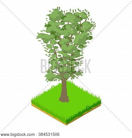 Walnut Tree Icon. Isometric Illustration Of Walnut Tree Vector Icon For Web
