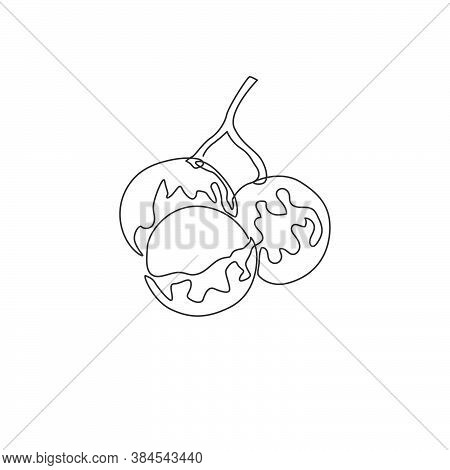 One Single Line Drawing Of Whole And Cut Healthy Organic Longan For Orchard Logo Identity. Fresh Fru