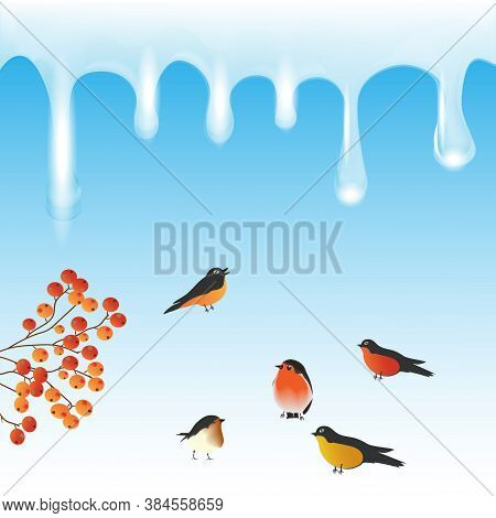 Garland Of Icicles, Flock Of Bullfinches, Rowan - Vector. New Year. Christmas.