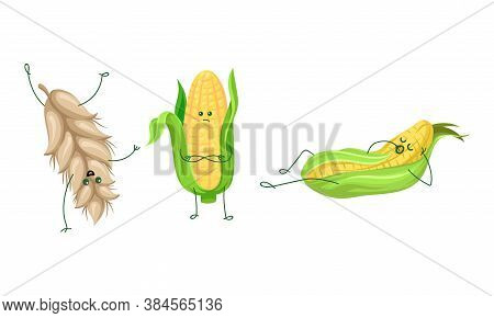 Humanized Ears Of Wheat Somersaulting And Corncob Yawning Vector Set
