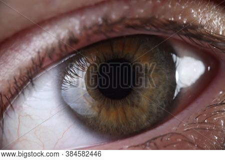 Human Eye With Eyelashes Cornea And Pupil Closeup. Eye Diseases Varieties And Treatments Concept