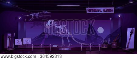 Historical Museum With Dinosaur Skeleton And Archeological Exhibits At Night. Vector Cartoon Interio