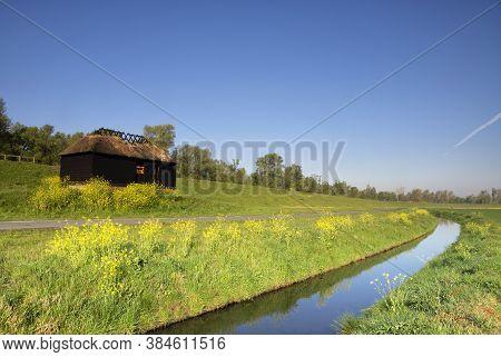Ditch In A Green Grassy Meadow Near Hank In The Dutch National Park De Biesbosch