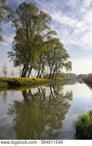 Trees Along The Bleeke Kil Creek In The Dutch National Park De Biesbosch Near The Village Hank