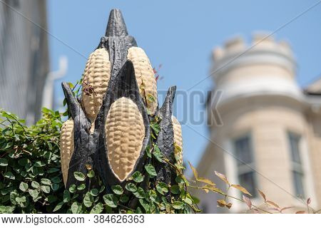 New Orleans, Louisiana/usa - 7/28/2018: Top Of Cornstalk Fence In The French Quarter Of New Orleans