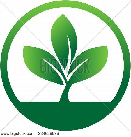 Vector Logo With Three Leaves Surrounded By A Circle. Leaves Logo. Nature Leaf Logo. Eco Leaf Logo.