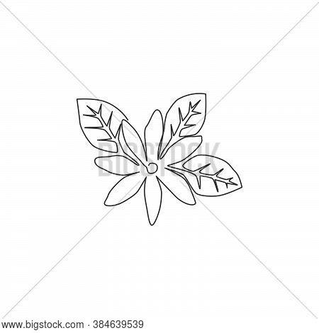 One Single Line Drawing Of Beauty Fresh Deciduous Jasmine Flower For Tea Drink Logo. Printable Decor