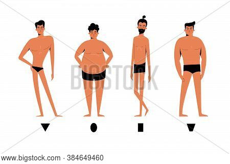 Male Body Shapes Set - Inverted Triangle, Oval, Rectangle, Rhomboid Figure Types. Human Anatomy Body