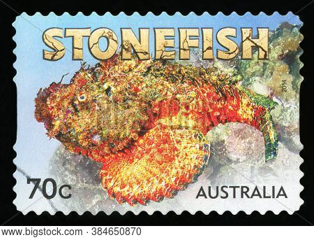 Australia - Circa 2014 :a Cancelled Postage Stamp From Australia Illustrating Stone Fish, Issued In