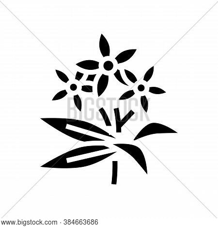 Neroli Flowers Aromatherapy Glyph Icon Vector. Neroli Flowers Aromatherapy Sign. Isolated Contour Sy
