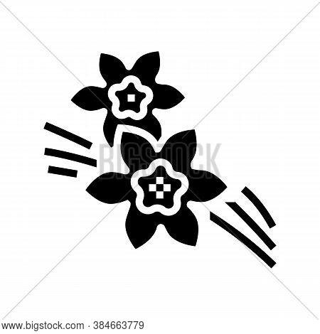 Vanilla Aromatherapy Glyph Icon Vector. Vanilla Aromatherapy Sign. Isolated Contour Symbol Black Ill