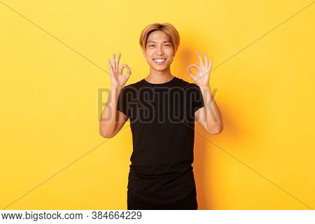 Portrait Of Smiling Confident Asian Guy, Looking Pleased, Showing Okay Gesture, Yellow Background